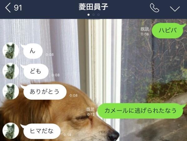 S__89948184