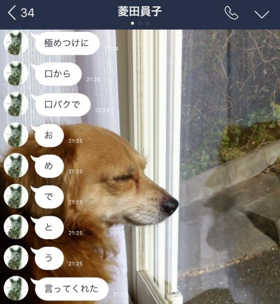 S__90005508